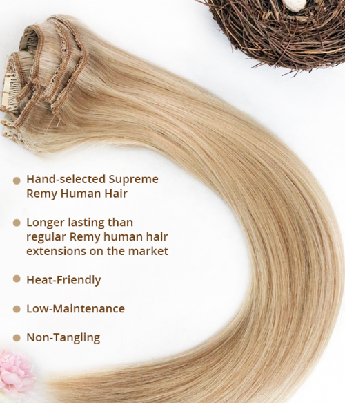 Violet 10 Pieces Clip-in Remy Human Hair Extension