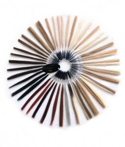 Color Chart- Human Hair Color Ring
