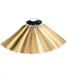 Color Chart- Human Hair Color Ring For BLonde Shades