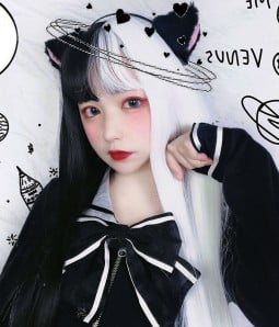 Limited Lolita Half Black and Half Silver White Long Straight Synthetic Wigs with Flat Bang