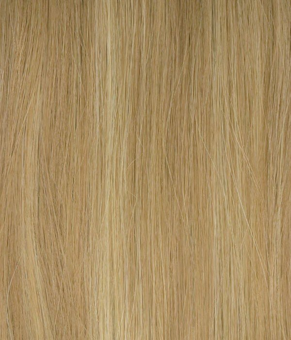 H14/24 - Honey Blonde Blend